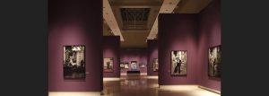 Helmut Newton. White Women / Sleepless Nights / Big Nudes - Palazzo delle Esposizioni